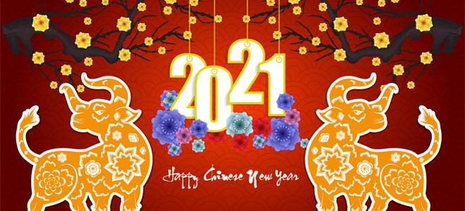 Поздравляем Вас с Новым 2021 годом!!!